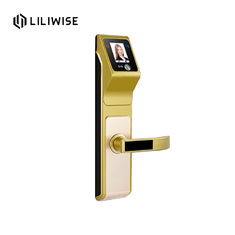 Fashion security big panel fingerprint password swipe card infrared face recognition intelligent household door lock