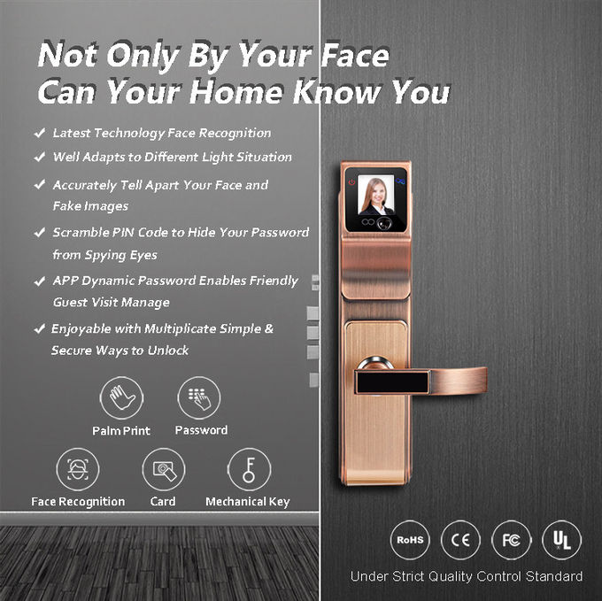 Smart 3D Infrared Face Recognition Door Handle Lock For Family and Company